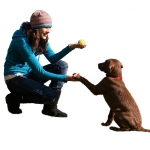 Negative Reinforcement: A Necessary Evil in Dog Training?