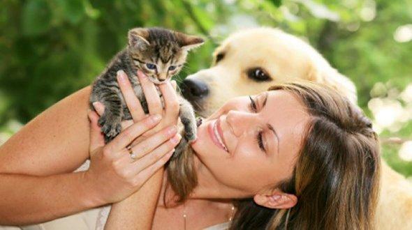 Reduce Pet Allergens