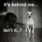 Behind Me