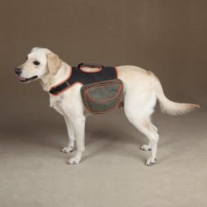 hiking backpack for dog