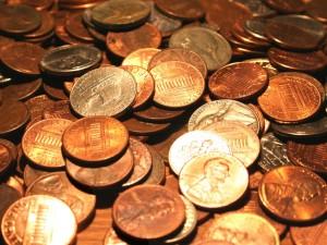 dog ate pennies